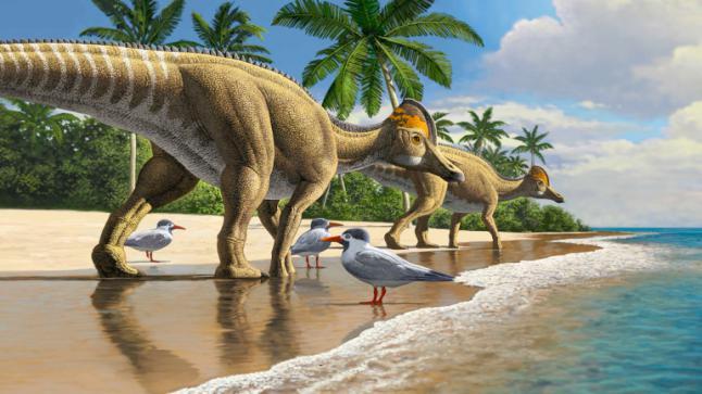 ديناصور بمنقار البط عاش في المغرب وأفريقيا قبل 66 مليون سنة