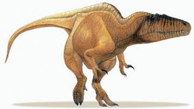 """المغرب.. اكتشاف أول """"ديناصور مائي"""" بالعالم"""